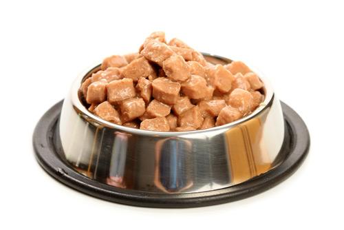 Vlhké krmivo pro psy
