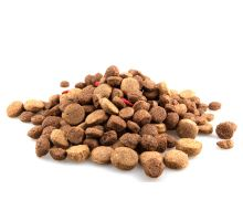 Purina PPVD Feline EN Gastrointestinal 400g