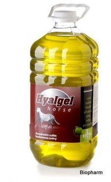 Hyalgel Horse jablko 5l, sirup pro regeneraci kloubů