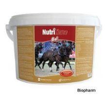Nutri Horse Gelatin plv  3kg,s želatinou