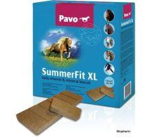 Pavo SummerFit XL 15kg, vitamínominerálové suchary
