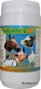 Vitamix SE plv 1kg