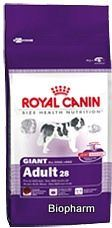 Royal canin Kom. Giant Adult  15kg