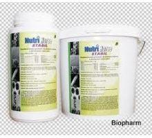 Nutri Horse Toxin plv 1kg, proti plísním a toxinům v krmivu