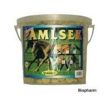 Mikrop pochoutka pro koně kyblík Bylinky 2,5kg